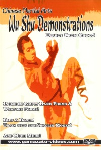 Chinese Martial Arts - Wu Shu Demonstrations